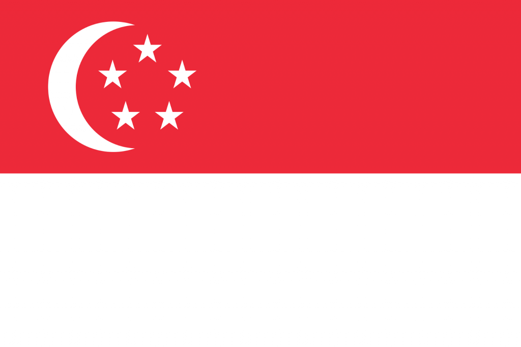 Доставка из Сингапура