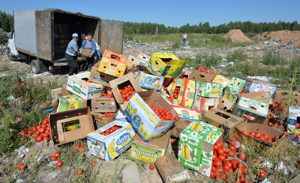 2675187 08/06/2015 Banned tomatoes confiscated at the Russia-Belarus border are destroyed at the landfill near Gusino, Smolensk Region. Viktor Tolochko/RIA Novosti